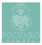 Polvaro Logo