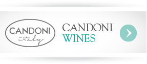 party-planning-candoni