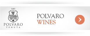 party-planning-polvaro