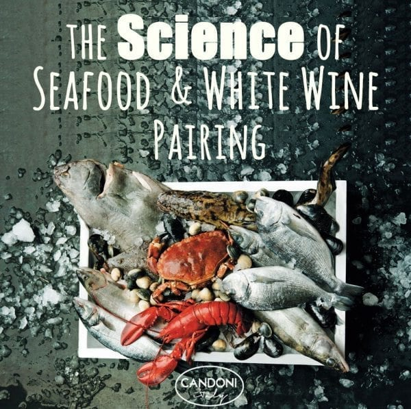 The Science Behind Seafood and Wine Pairings