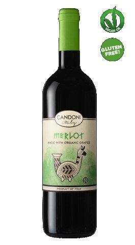 Organic Merlot   Italian Wine   Candoni De Zan