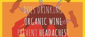 130x300-organic-wine