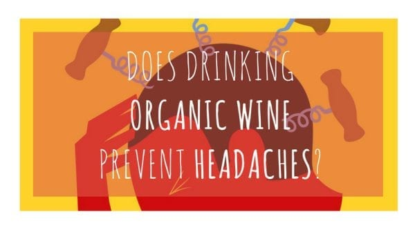 Does Organic Wine Prevent Headaches