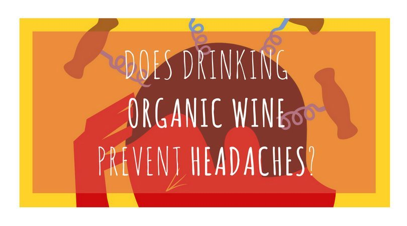 How to avoid headaches after drinking wine