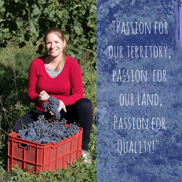 passion for quality | merlot wine