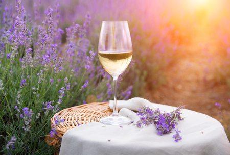 favorite spring wines